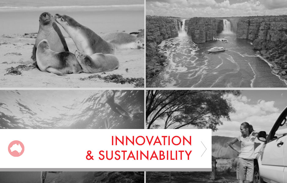Innovation&Sustain-Placeholder